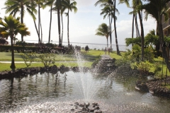 Manicured Grounds and Koi Pond at Papakea Ocean front resort