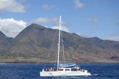 Safari Boat Excursion - Maui