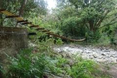 Swinging Bridge - Maui